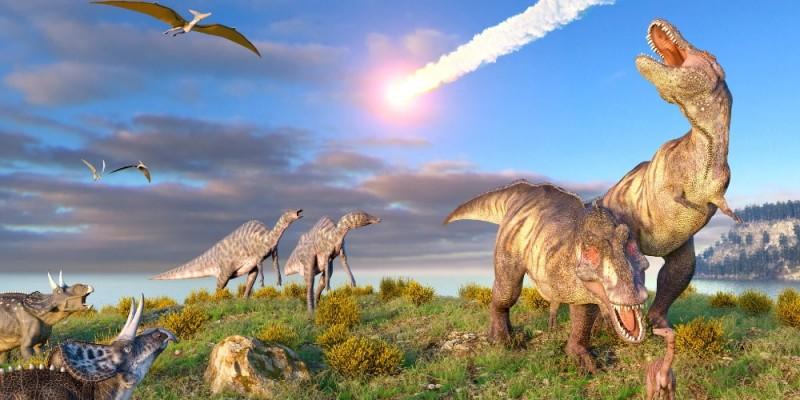 Stampare a fianco dei dinosauri